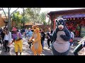 An Awesome Day At Disney's Animal Kingdom!   New Dance Party, New Treats & New Merch!