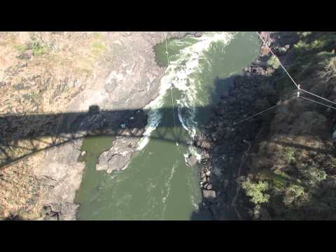The Swing over The Zambezi River