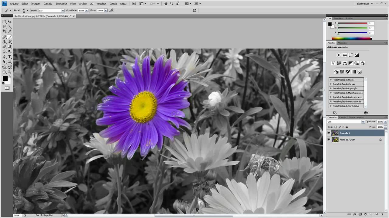 Fundo Preto e Branco detalhe Colorido e Foto Rasgada