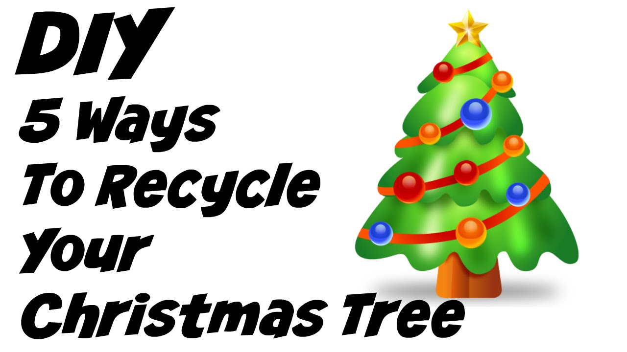 5 Ways To Recycle Your Christmas Tree Youtube