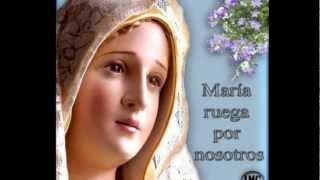 TE CANTO MARÍA - RENOVACIÓN CARISMÁTICA CATÓLICA
