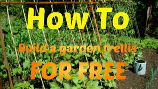 How To: Make A Garden Trellis for Beans or other vegetables for FREE