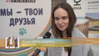 """Домашние животные: Репортаж """"ЮНА - Фест"""""""