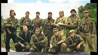 "нагора ""Чечня-снайпер"""