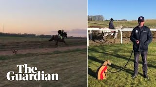A racehorse trainer was filming horses on his Berkshire Downs gallops on Monday morning when he unintentionally recreated a new version of the infamous ...