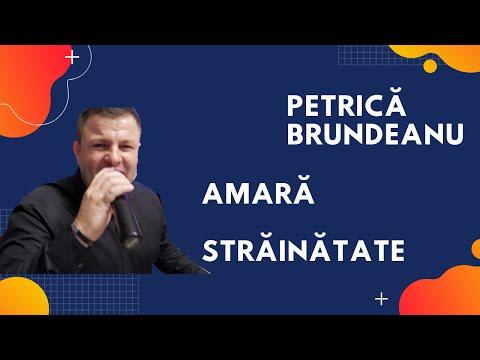 Petrica Banateanu - Amara strainatate