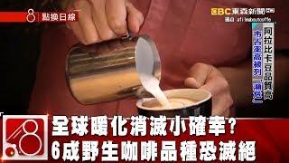 全球暖化消滅小確幸? 6成野生咖啡品種恐滅絕 《8點換日線》2019.01.23