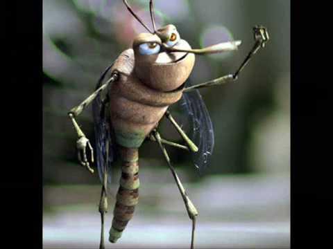 pastekova komar