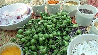 Village food Recipe /chundakkai curry /Village Style chundakkai recipe / Indian village Cooking