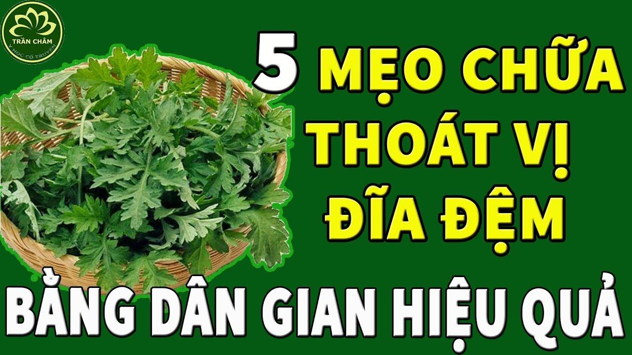 5 Bài thuốc dân gian chữa bệnh thoát vị đĩa đệm hiệu quả vô cùng
