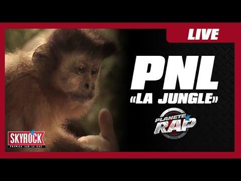 """PNL """"Jungle"""" #PlanèteRap"""