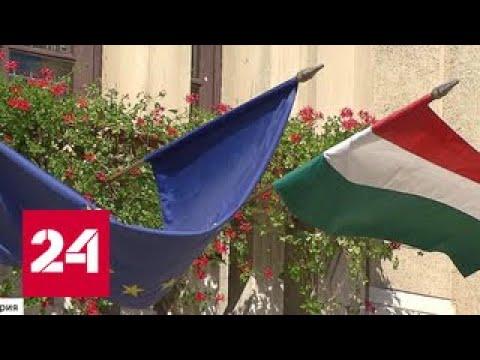 Инициатива венгерских ученых