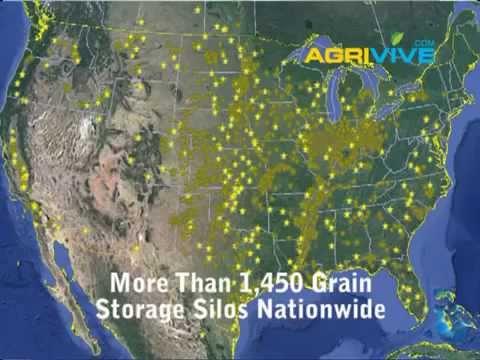 Bulk Suppliers, Grains Trading Companies, Grains Trading, Trading Grains Company, Grain Exports