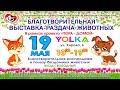 Благотворительная выставка-раздача животных в г. Йошкар-Ола. 19.05.2018 г.