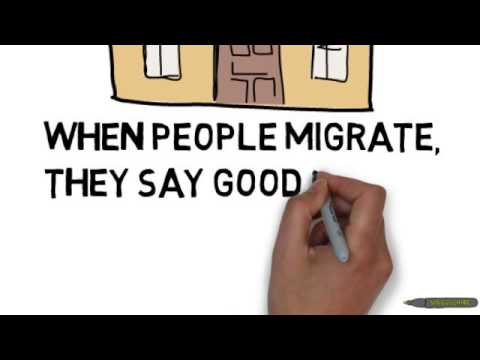 Migration video for primary school