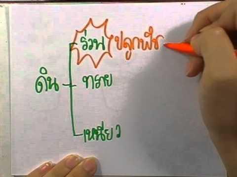 ข้อสอบเข้าม.1 : วิทย์ ชุด02 ข้อ03