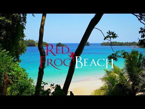 Red Frog Beach Real Estate - Bocas Del Toro, Panama