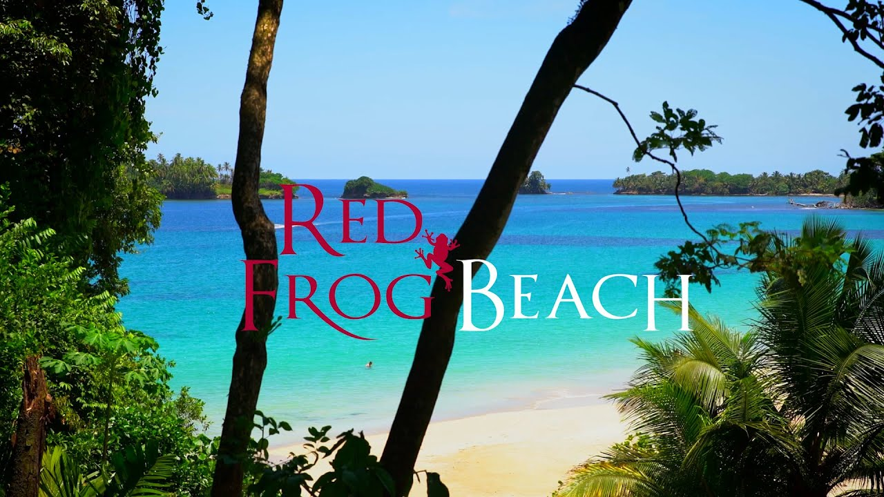 Red Frog Beach Island Resort Certified For Its: Red Frog Beach Real Estate