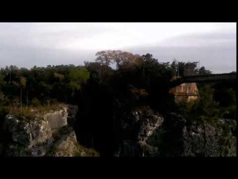 Canyon Wren Song