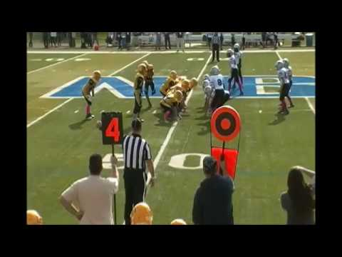 The Wing T Offense, Plays, Playbooks, and Tips - Youth Football Online