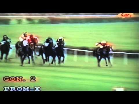 Wyścig IV grupy - 24.10.1998 - Telma (Freedom's Choice - Tercja)