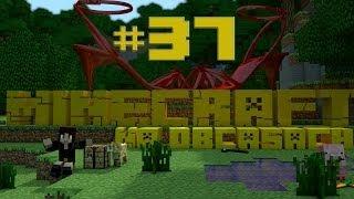 Minecraft na obcasach - Sezon II #37 - Pogadanka w jaskini