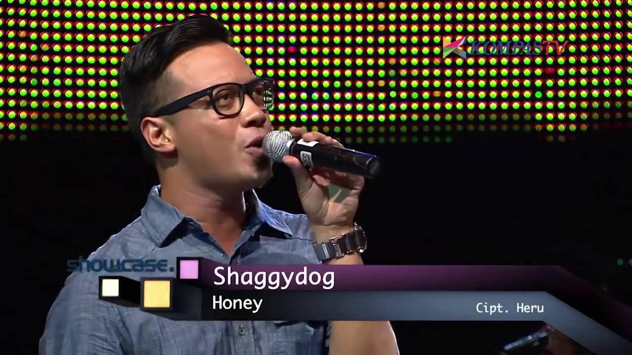 Hasil gambar untuk Honey - ShaggyDog