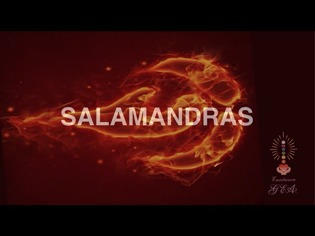 Meditación por los Seres  Elementales, Las Salamandras.