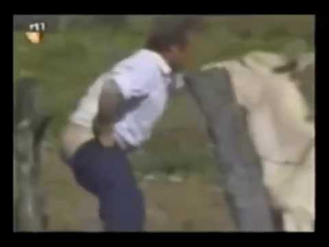 Сексуальное нападение животных на людей! Ржач!!!