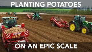 Planting Potatoes - Large Scale Farming - 2015