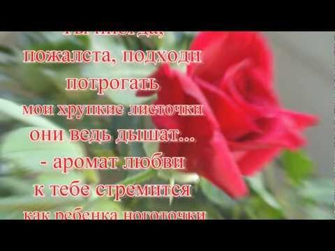 Самохина, Анна Владленовна — Википедия