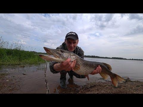 Рыбалка на Каме. Середина июля, дали воду. Ушел в троллинг.