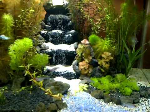 aquascape waterfall diy part2 by chanel compilation
