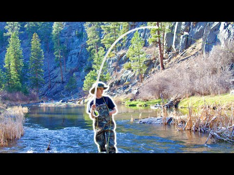 Canyon River FLY FISHING For My Favorite Trout EVER!--New Personal Best!!