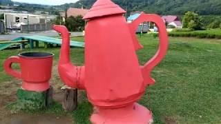 Экскурсия в Сочи! Чайные плантации!!! Дагомыс. Часть вторая.