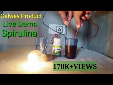 Galway spirulina demo with electricity | Spirulina tablets benefits in hindi | Spirulina Review