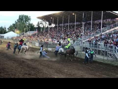 Red Bluff CA,2019 wild horse race