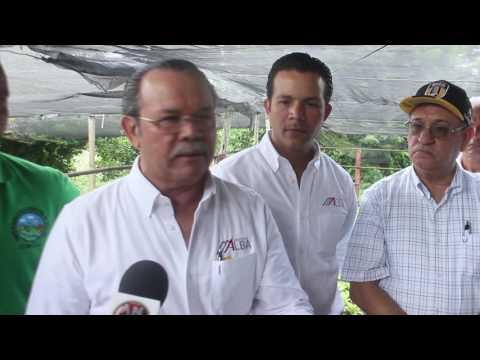 Fundación Alba Rosario y Mina Angosturas entregan 10 mil plantas de Café a ADEPE