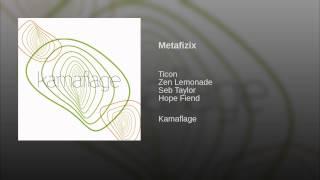 Metafizix