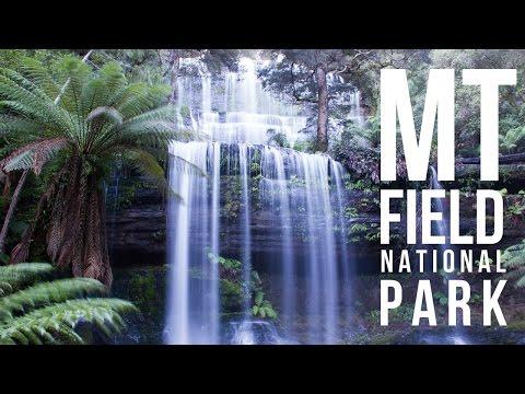 Waterfalls & Wonderment   Mt Field National Park, Tasmania