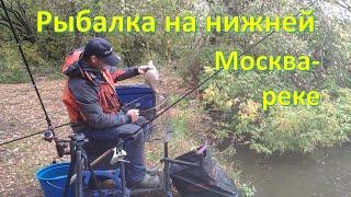 рыбалка на нижней Москва реке