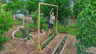 How to Build a Tomato Trellis Using Only ONE PIECE of WOOD, CHEAP and EASY Backyard Gardening