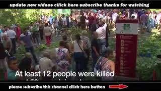 Caught On Camera Madeira falling tree kills 12