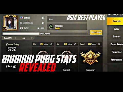 pubg player stats asia