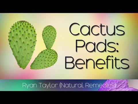 Cactus Leaf: Benefits & Uses (Nopales)