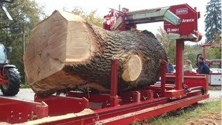 SATISFYING Sawmill, Wood Cutting, Wood Splitting - MACHINES IN ACTION