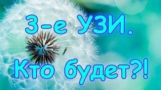 Были на 3-ем УЗИ. Кто будет? Как себя чувствую. (08.17г.) Семья Бровченко.