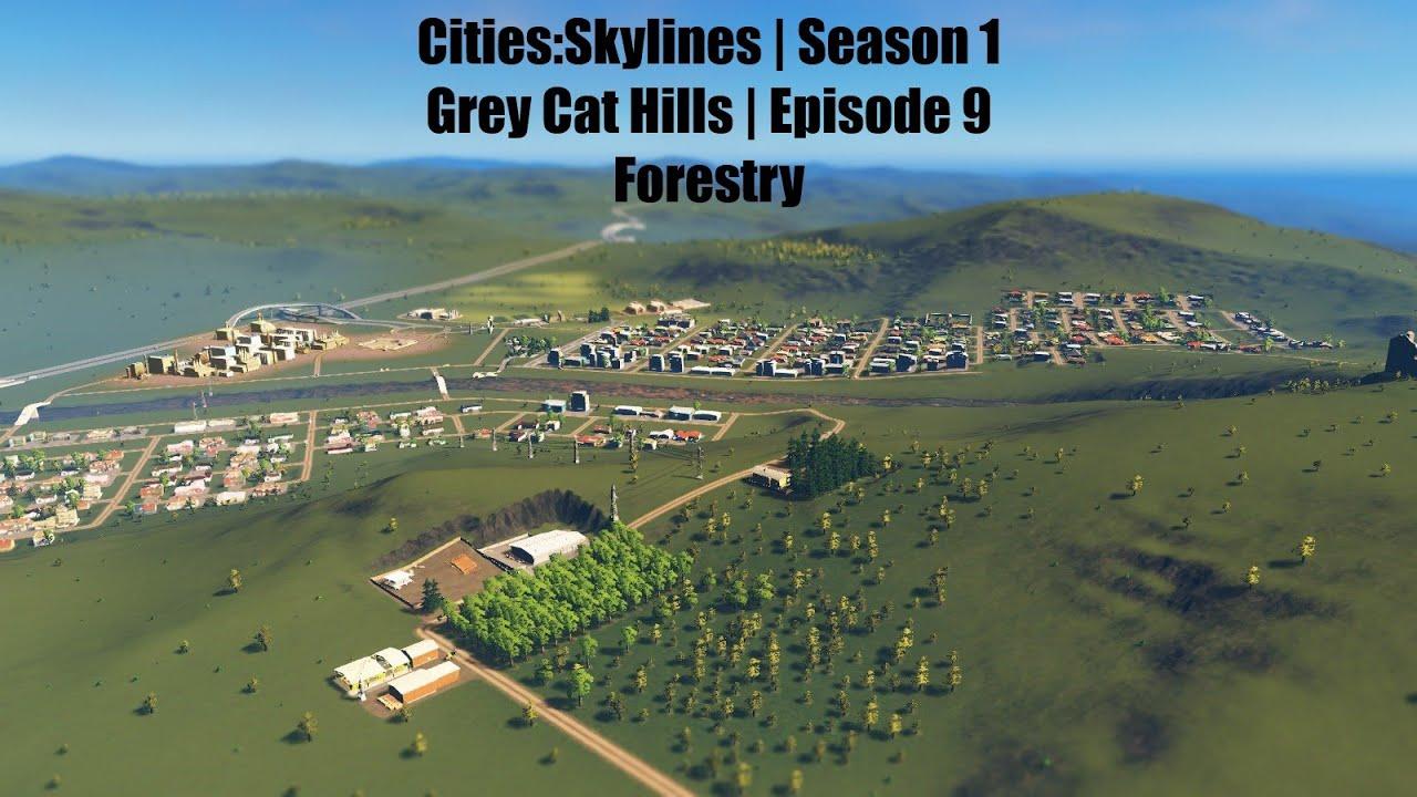 Download Cities: Skylines | Grey Cat Hills | Season 1 Episode 9 | Forestry