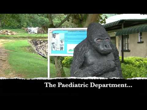 RCGP at Bwindi Community Hospital