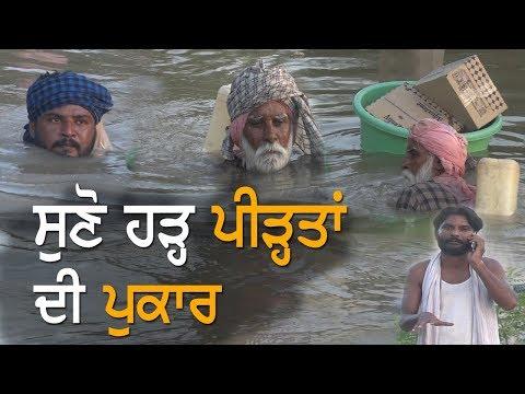 Punjab Floods | ਹੜ੍ਹ 'ਚ ਫਸੇ ਨੌਜਵਾਨਾਂ ਤੋਂ ਸੁਣੋ ਅਸਲੀਅਤ  | TV Punjab